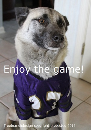 dog in Ravens jersey